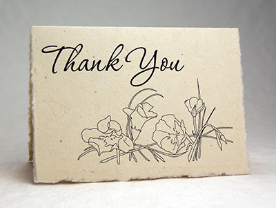 Seeded Lotka Thank You Card Primrose