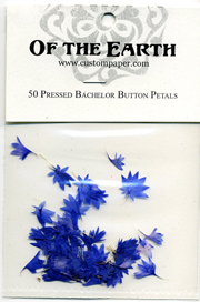 Bachelor Button Petal