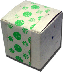 Lotka Seeded Favor Box - Green Flowers
