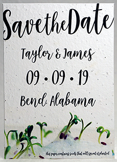 sprouts seed paper invitation 5x7