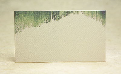 Color Felt Hanging Moss Business Card Size