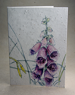 foxglove invitation