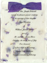 seed paper torn edge invitation with vellum and silk ribbon