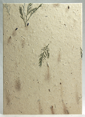 Recycled Lotka, lavender and treefern handmade paper