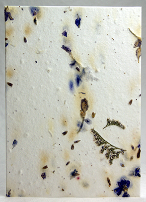 Larkspur, lavender, and misty handmade paper